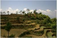 Dag 05 - Terrassen onderweg naar Dhulikhel
