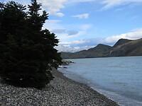 Dag 19 - Lago Nordenskjold