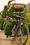 Dag 11 - Fiets met bananen