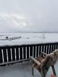 uitzicht vanuit restaurant bij cottages