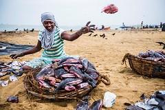 Negombo is een vissersplaarts