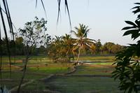 Begin van de avond Polonnaruwa