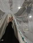 Night in the hammock