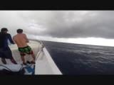 speedboot duilocatie 2