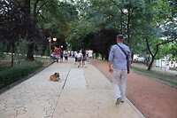 Wandelen in het Grote Park