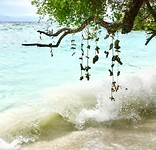 Freedom beach 😍