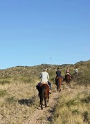 20160830_174048-1-2  Dorine te paard.2
