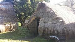 20160913_163257  Mapuchehut.1