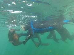 GOPR4793  onder water.1
