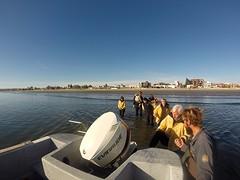 GOPR4753  speedboat