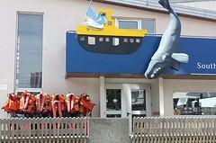 20161028_122053-1  Rustige haven.1