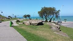20161108_141146(0)  Mar del Plata Beach.7