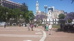 20161112_104022  Plaza de Mayo