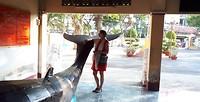 218 Dorine bij walvis
