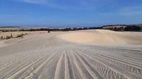 250.Witte duinen