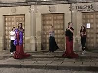 Flamencoles.