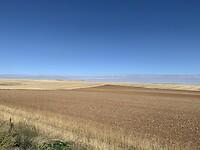 Leeg land tussen Ávila en Salamanca