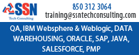 SSN Tech Consulting