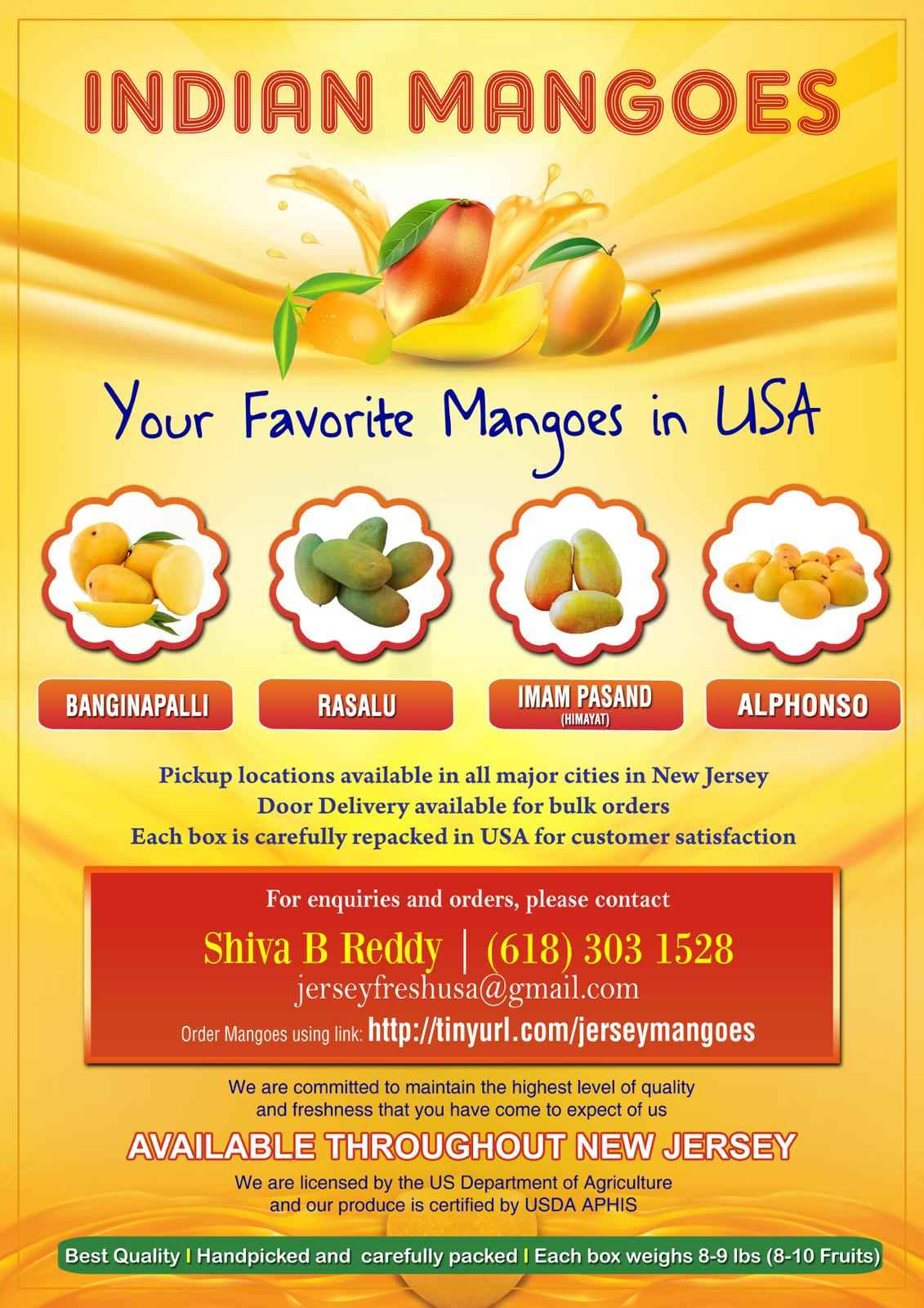 Indian Mangoes in New Jersey