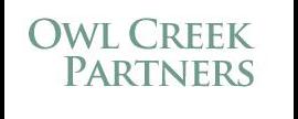 Owl Creek Partners LLC