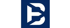 True Blue Partners LLC