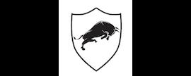 American Alpha Partners LLC