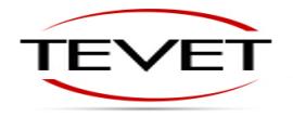 Tevet, LLC