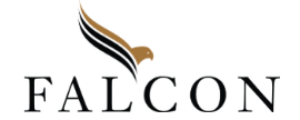Falcon Capital Partners, LLC