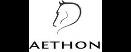 Aethon Holdings