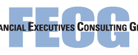 The Financial Executives Consulting Group