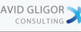 David Gligor Consulting LLC