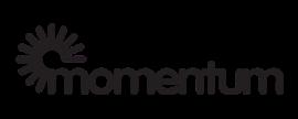 Momentum Design Labs