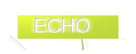 ECHO Health IT Networks, Inc