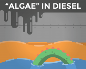 how to remove algae from diesel fuel.