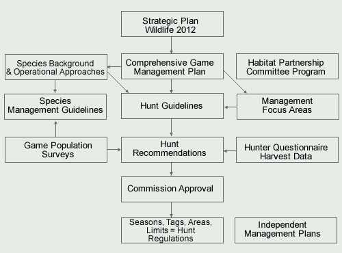 Game Management Process Map