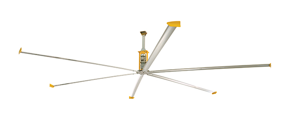 ceiling fans and mobile and wall