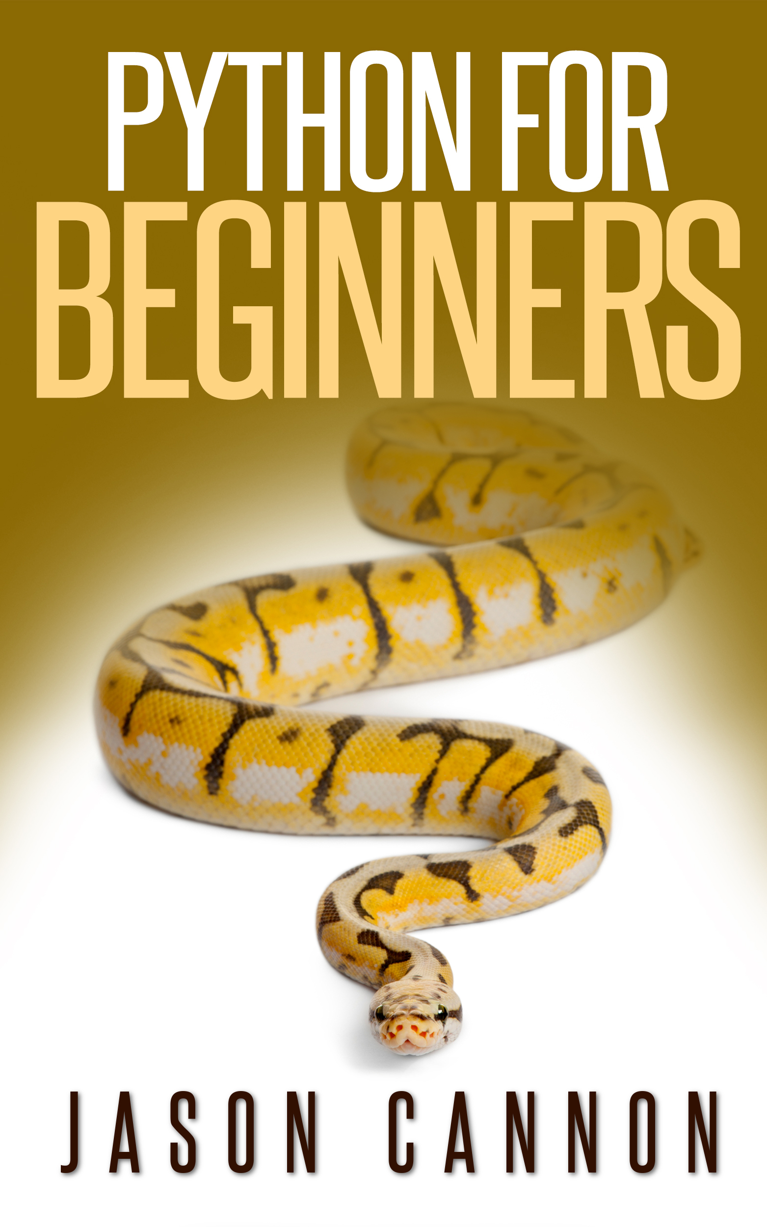 Python programming for beginners: an introduction to the python computer language