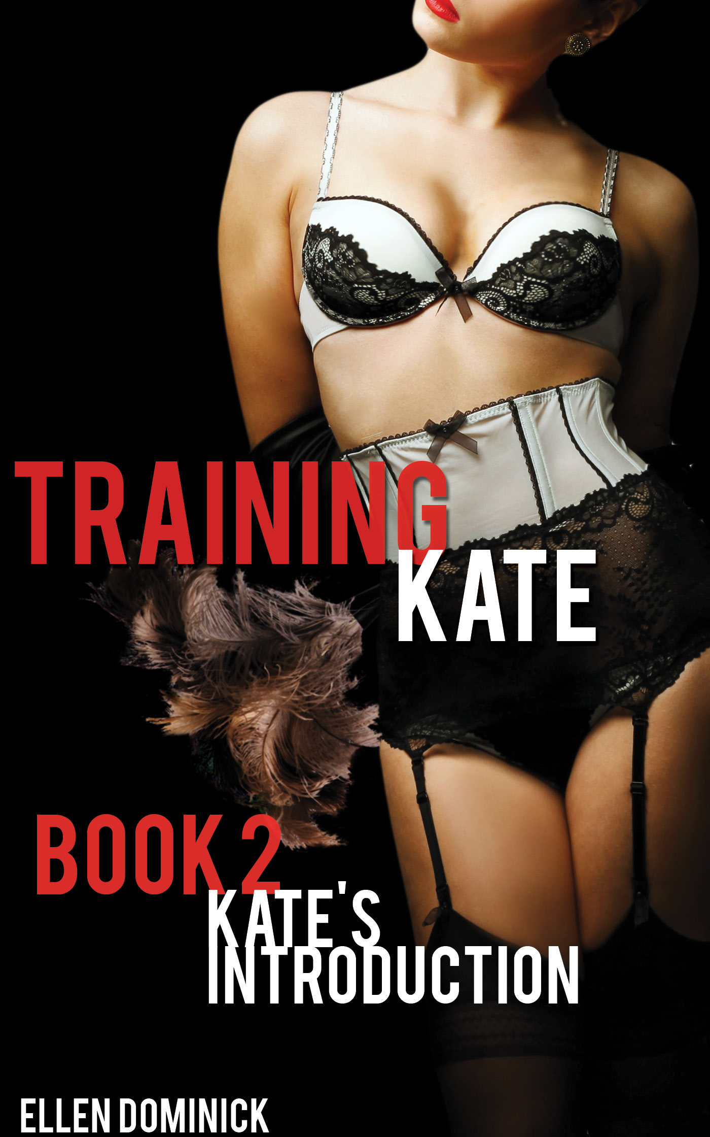 Kate's introduction (training kate: the submission of a maid book 2)