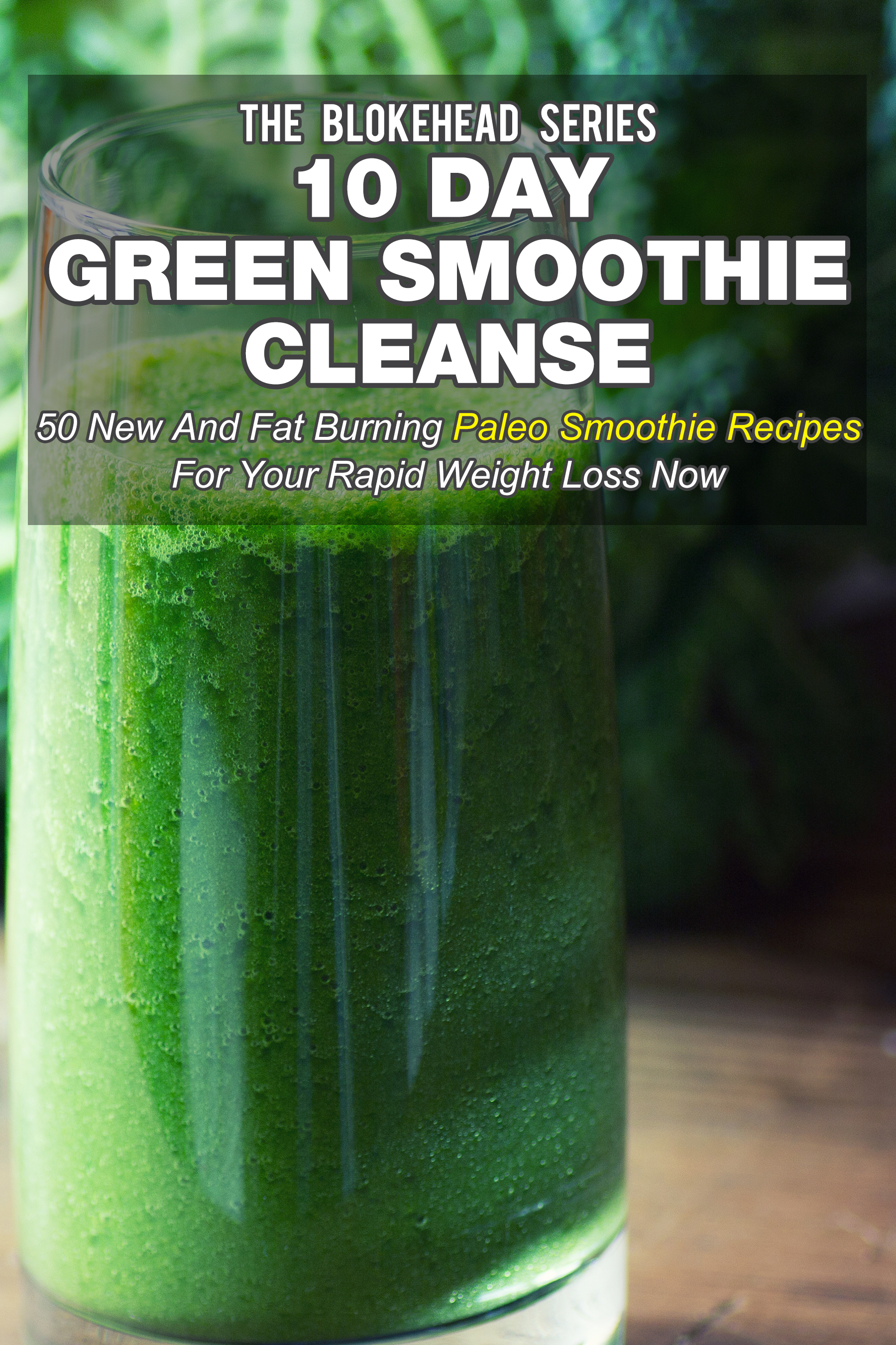 10 day green smoothie cleanse: 50 fat burning paleo smoothie recipes for rapid weight loss now