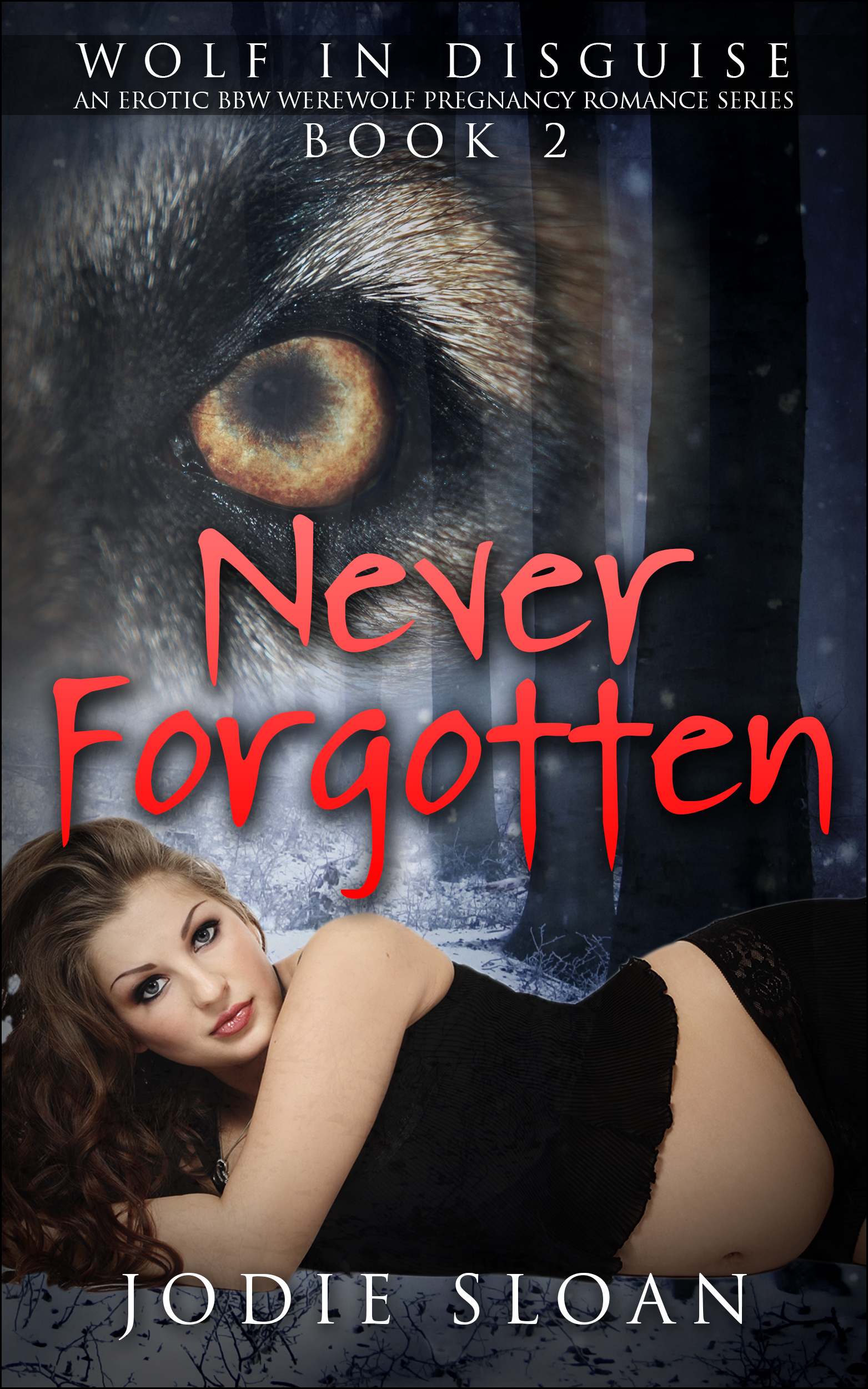 Wolf in disguise : never forgotten