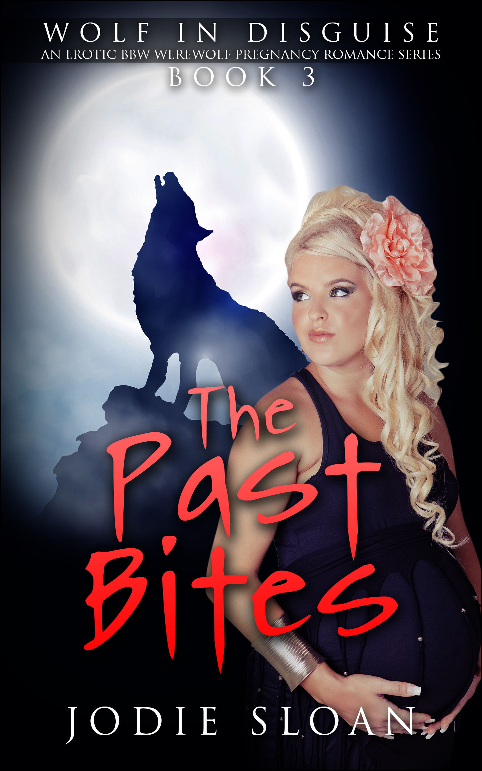Wolf in disguise : the past bites