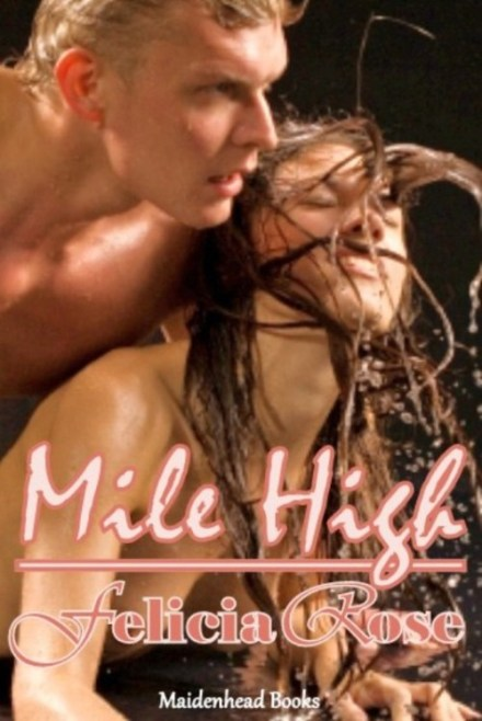 Mile high [lust in an airplane]