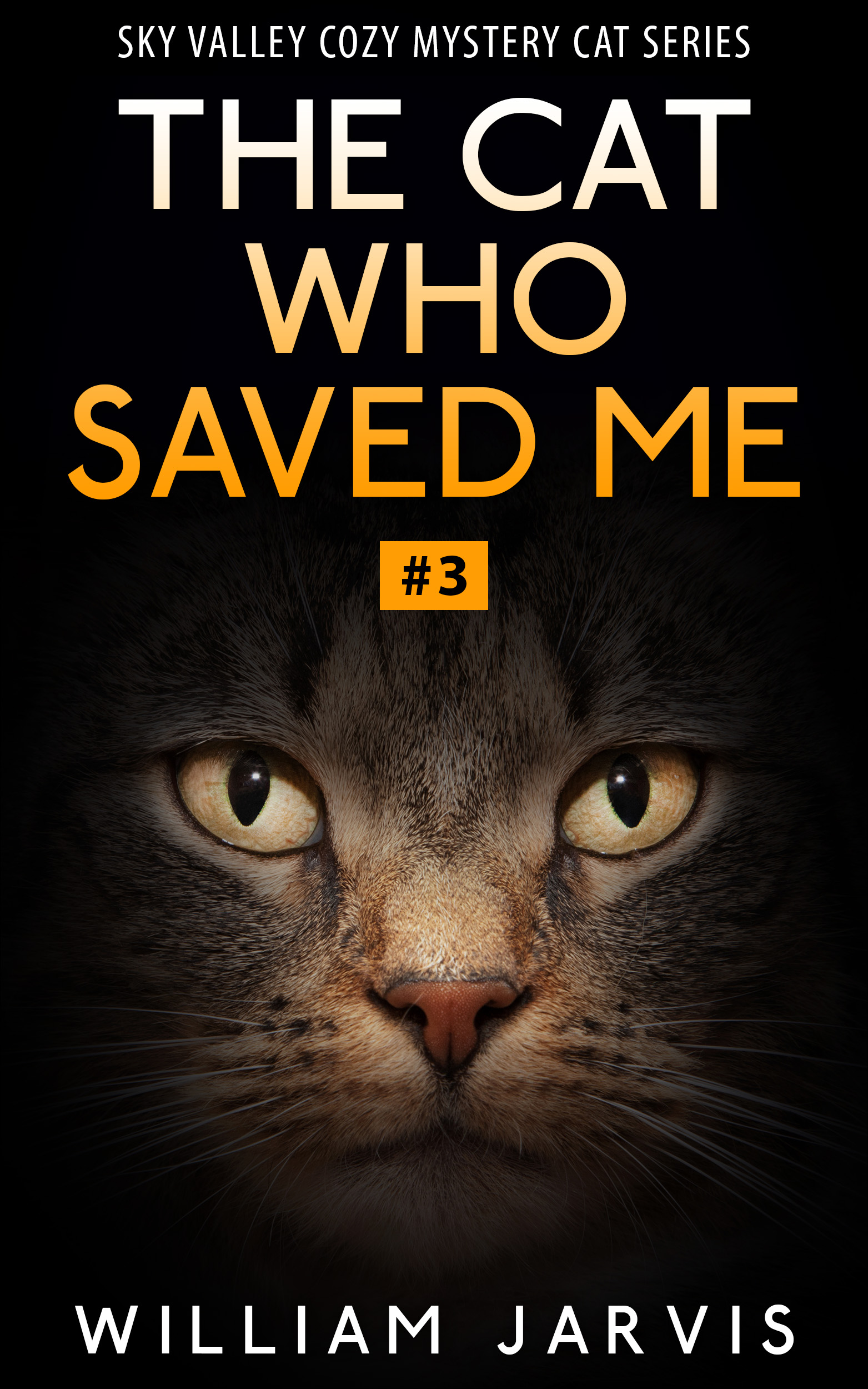 The cat who saved me #3