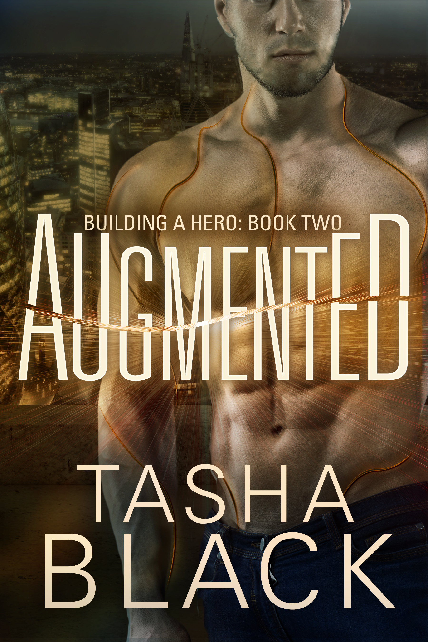 Augmented: building a hero (book 2)