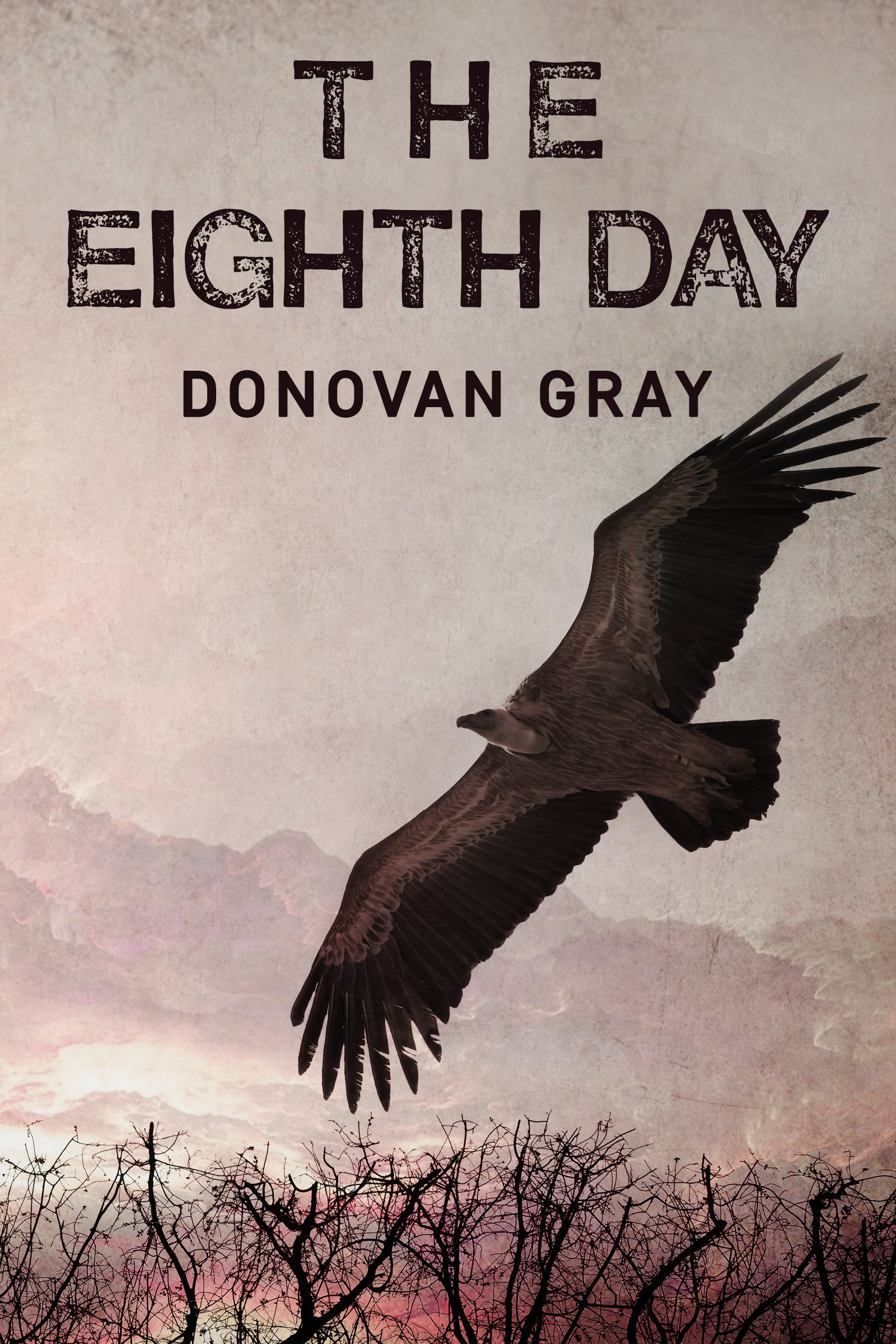 The eighth day n/a