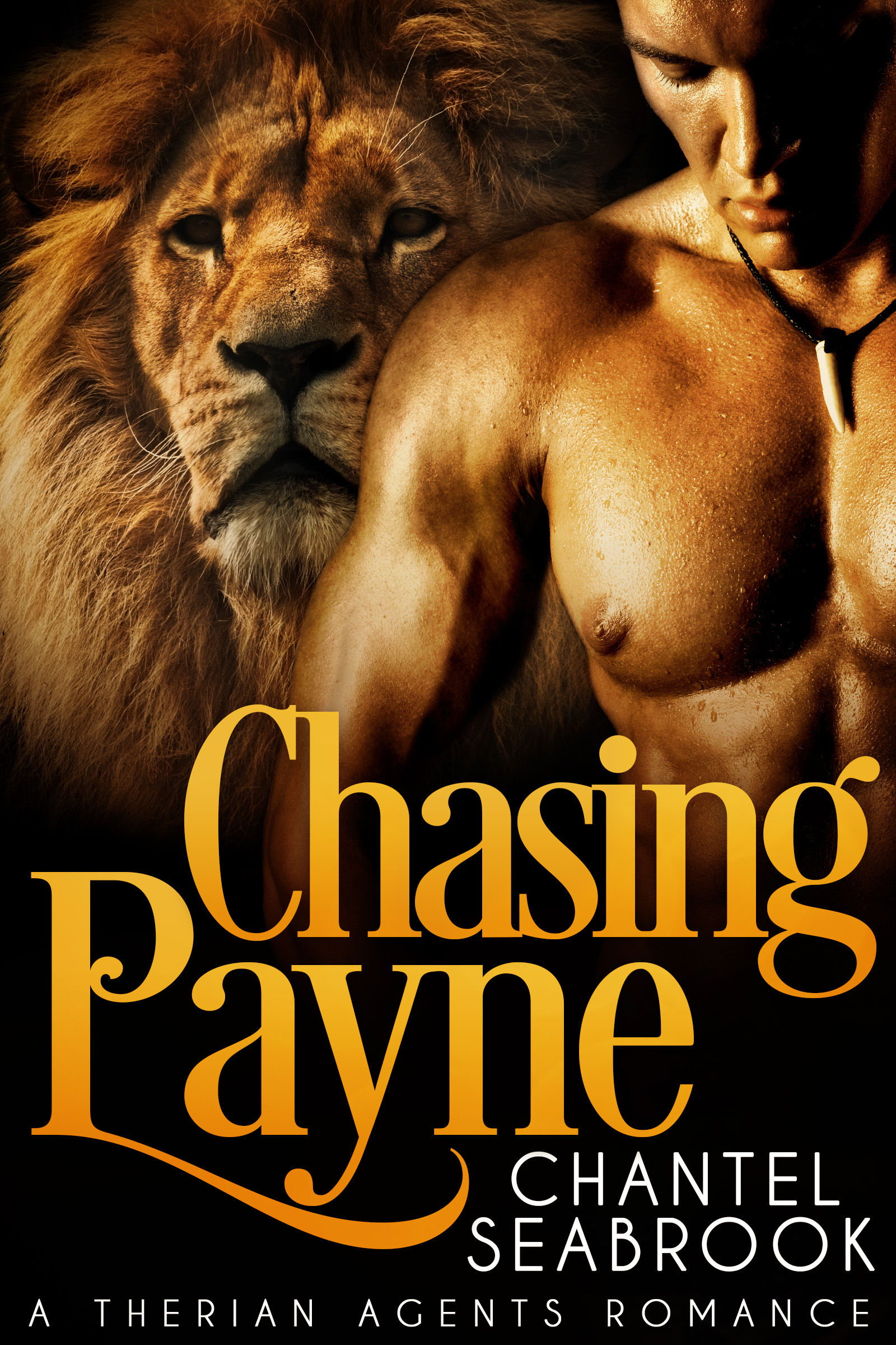 Chasing payne (n/a)