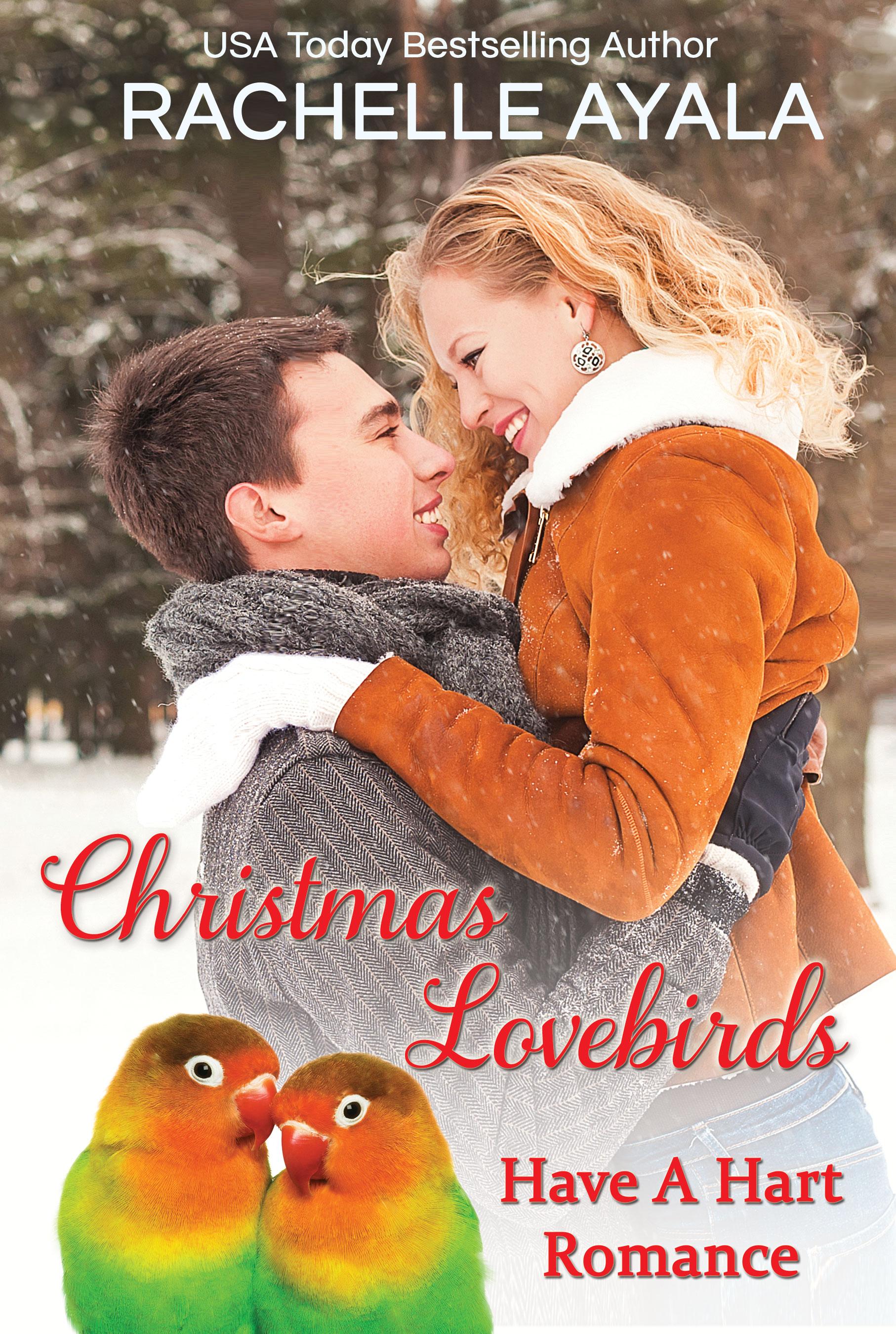 Christmas lovebirds