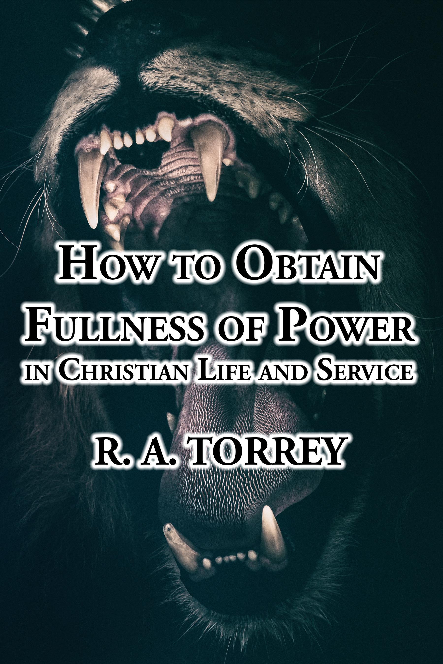 Babelcube  U2013 How To Obtain Fullness Of Power In Christian