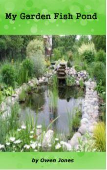 My garden fish pond