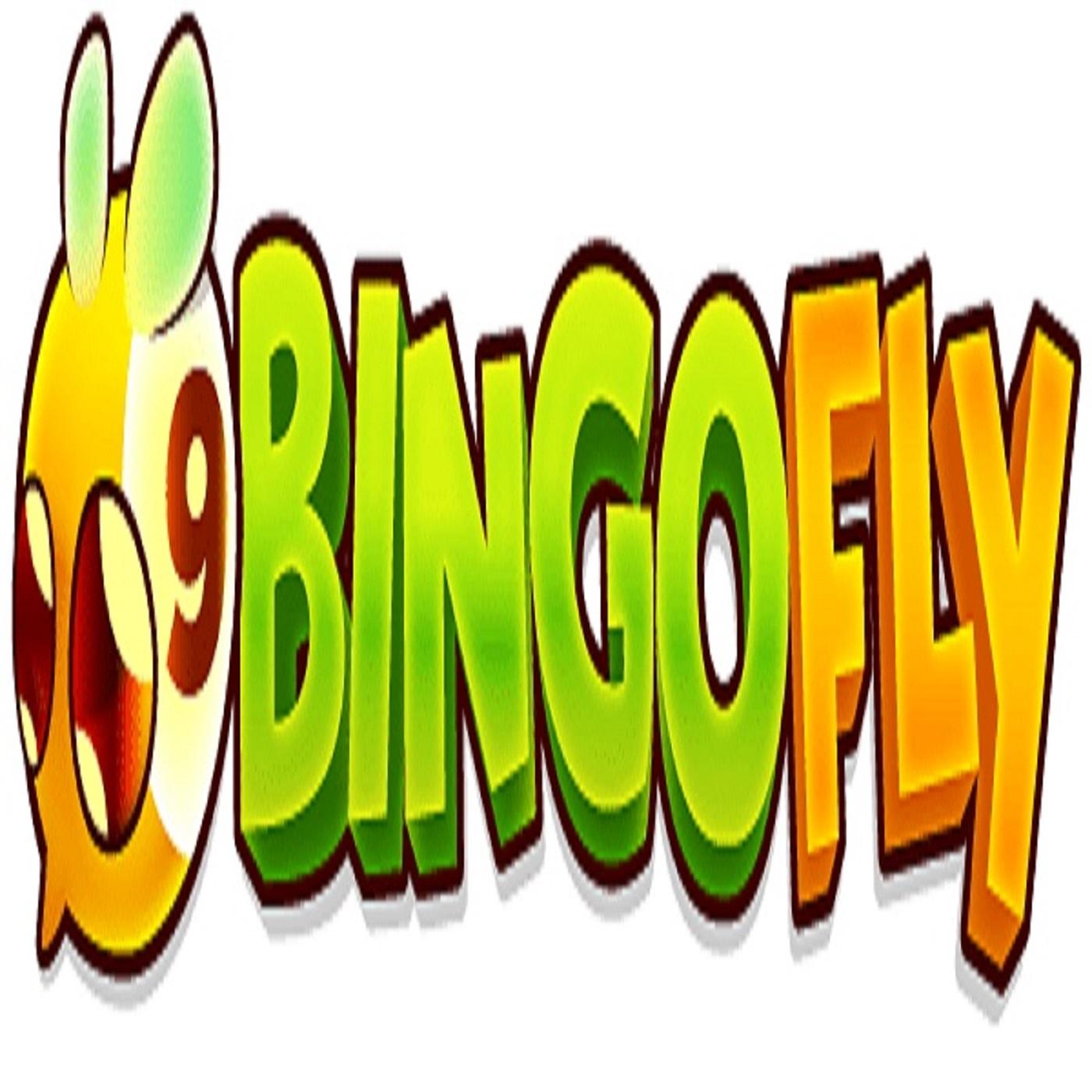 Bingo fly